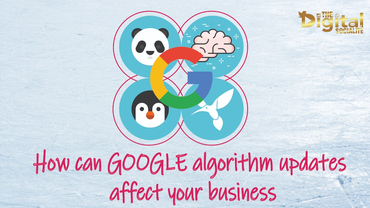 google algorithm update effects on businesses